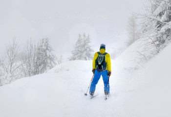 Man of back in ski touring under a snowfall