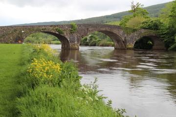 Irish Bridge