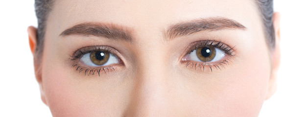 Closeup Shot of Woman Eye looking to Camera. Woman with Beauty Concept, Isolated on White Background.