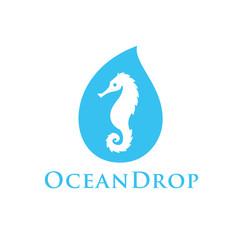 seahorse inside water drop