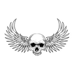 Human skull with wings for tattoo design.
