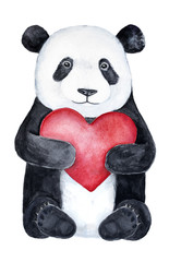 Cute little panda teddy bear holding a big red heart. Romantic holiday, wedding, love confession, Saint Valentine's Day, joy symbols illustration and decor, hand drawn, isolated on white background.