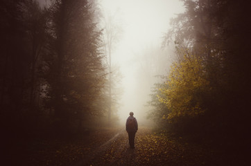 man walking on forest path on rainy day