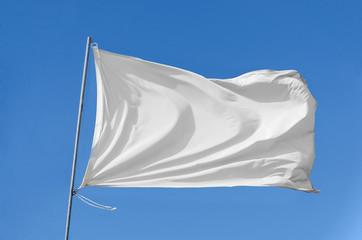 flag waving on the sky