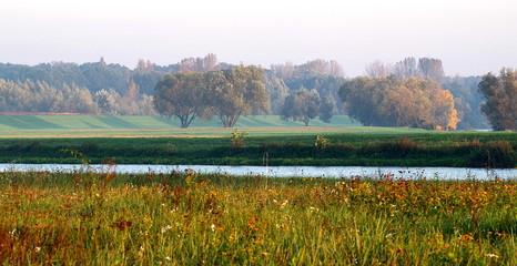 las rzeka i łąki