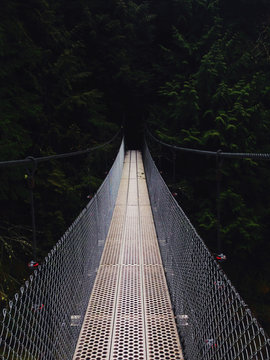 Bridge into the Abyss