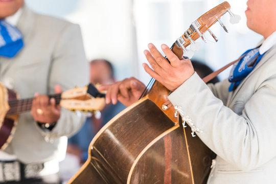 Mariachi Musician