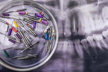 Wall Mural - Dentist's medical equipment tools on x ray background