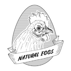 Sticker with a picture of a chicken. Natural eggs. Vector