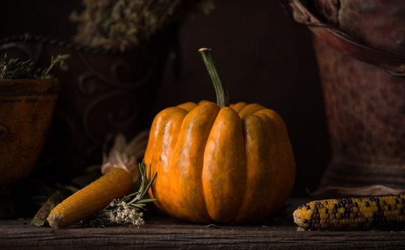 Still Life Pumpkin with Corn