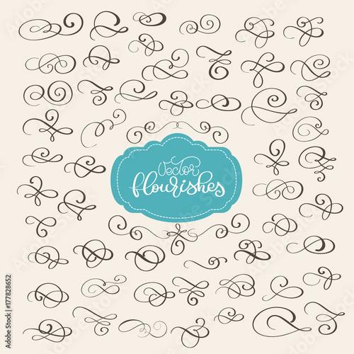 Set of flourish swirl ornate decoration for pointed pen ink set of flourish swirl ornate decoration for pointed pen ink calligraphy style quill pen flourishes stopboris Gallery