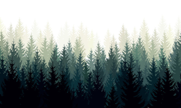 Vector landscape with green silhouettes of coniferous trees in the mist
