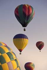 Group of Colorful Hot Air Balloons in Flight