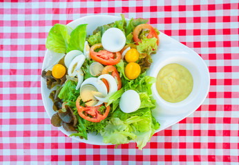 High angle view of a nutritious vegetable salad with boiled egg slices, served on a white plate with salad dressing on top of a table