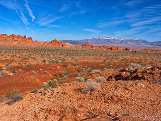 Classic view. Valley of Fire, Nevada, USA