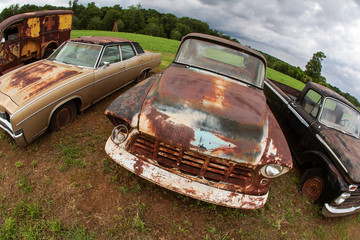 Rusted Antique Vehicles Sit Lined Up In Auto Junkyard