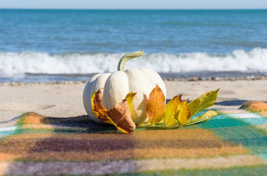 White pumpkin and fall leaves at the beach on a windy day with surf crashing in the background