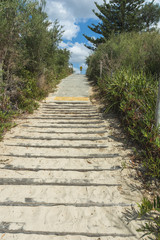 Pathway from the beach.