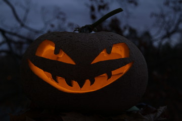 Kürbiskopf / Halloween / beleuchtet