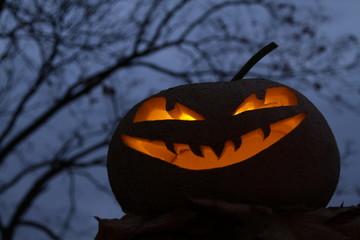 Kürbiskopf / Halloween / Dunkelheit