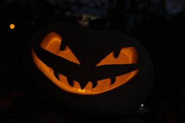 Kürbisfratze/ Halloween / Dunkelheit