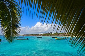 Fototapete - Akumal bay beach in Riviera Maya