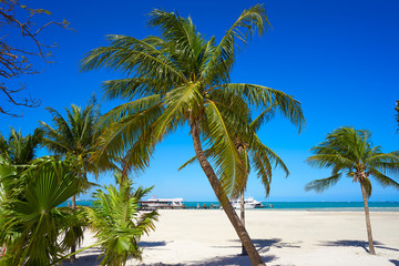 Wall Mural - Cancun Playa Langostas beach in Mexico