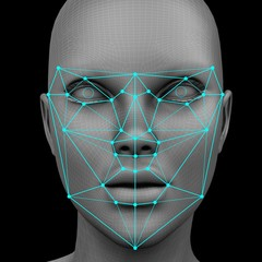 biometric facial recognition without hair