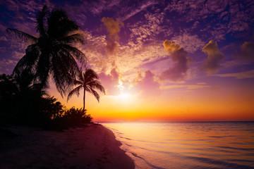 Wall Mural - Holbox island sunset beach Mexico