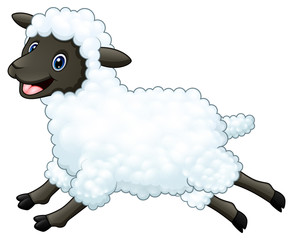 Cartoon happy sheep jumping isolated on white background