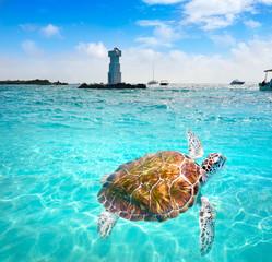 Isla Mujeres lighthouse El Farito snorkel point