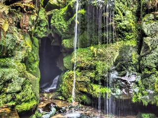 Peaceful nature stream