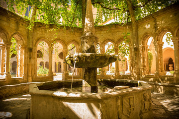 Historic architecture - Fountain in Valmagne Abbey, France