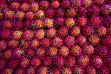 Mexican Rambutan stacked in raws