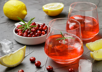 Cold refreshing drink of cranberry, lemon, rosemary and ice cubes. Selective focus