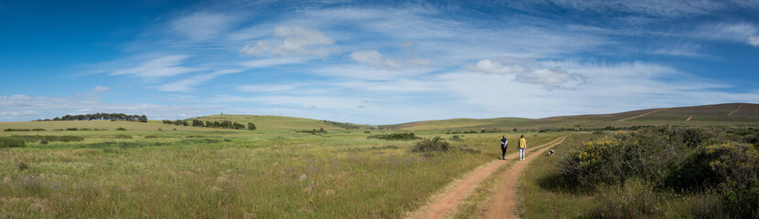 A family walk on a farm near Darling, South Africa under a cloudy blue sky Wall mural