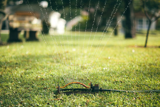lawn sprinkler watering grass in the morning