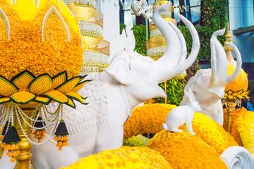 象の象・花