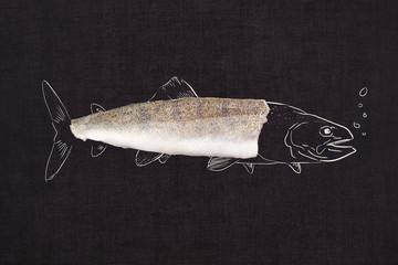 Fish fillet slice. Seafood background.