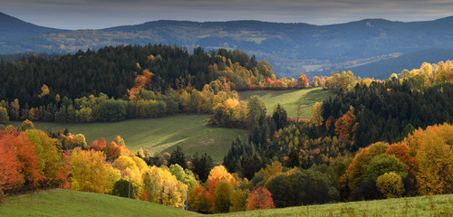 Touch of soft light on gentle rolling hills with trees in vivid autumn colours, Sumava, Böhmerwald, Kasperske Hory Wall mural