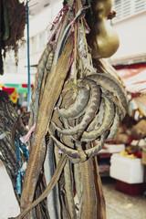 Snake Skins Hanging in a Hong Kong Market