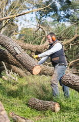 handy man using chainsaw as part of a garden renovation