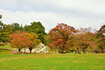 松本市アルプス公園の秋