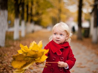 Portrait of little girl with yellow maple leaves