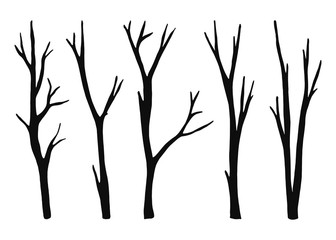 twigs from the tree are dry isolated. vector black silhouettes. illustration on white background