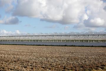 Greenhouses and potato field