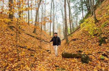 Mature Men On Autumn Hike