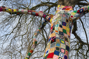Top of a Yarn bombed tree. Tree covered with knitted wool yarn.