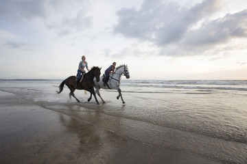 Women horse riding on beach at sunset.