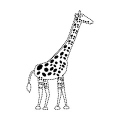 flat line  uncolored   giraffe  sticker over white background  vector illustration